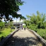 Foot Bridges of San Agustin 8